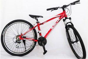 دوچرخه کویر، گزینه ای مناسب برای خرید