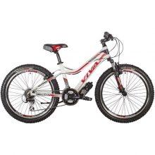 دوچرخه ویوا سایز ۲۴ مدل FASHION 2427
